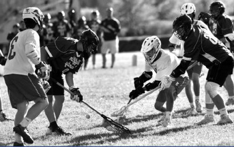 Members of the boys' lacrosse team fight for a ground ball against Mifflin County.
